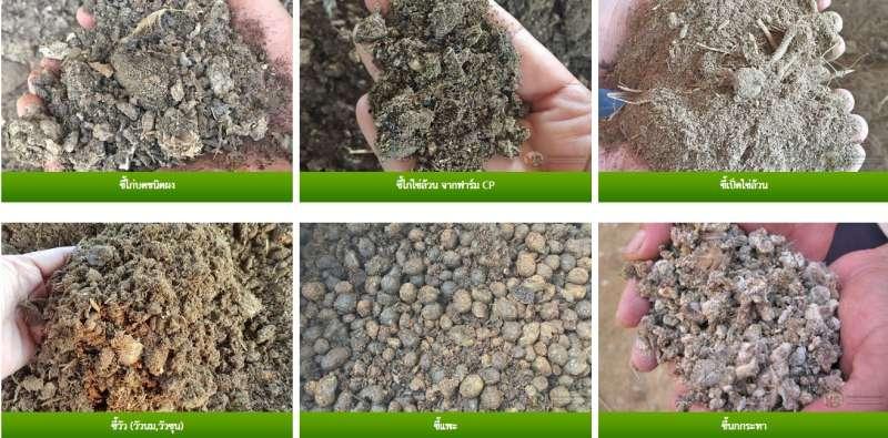 ผลิต และจำหน่าย ปุ๋ยอินทรีย์เพื่อการค้า  การเกษตร