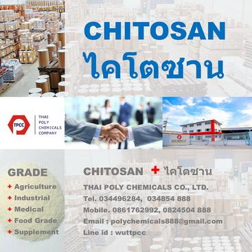 ไคโตซานเกล็ด, Chitosan Flake, ไคโตซาน, Chitosan, ไคติน, Chitin