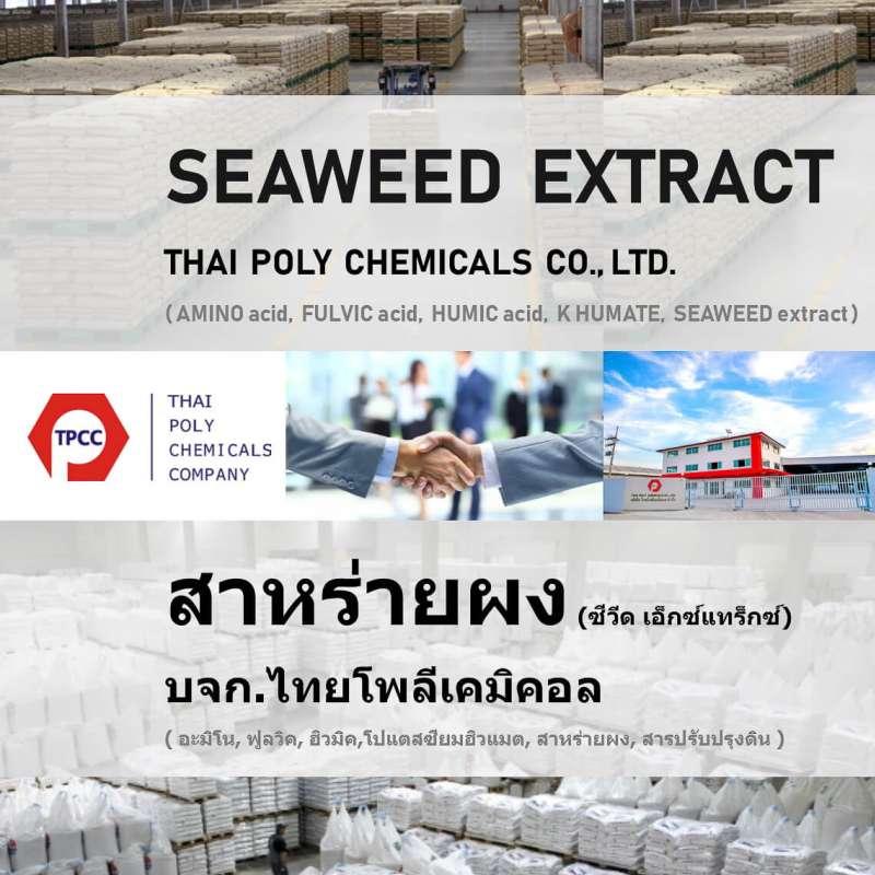 สาหร่ายผง, Seaweed extract, สาหร่ายสกัด, Seaweed powder, ปุ๋ยสาหร่าย, ซีวีดเอ็กซ์แทร็กซ์