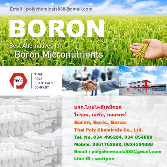 Boron, โบรอน, Boric acid, บอริกแอซิด, Borax pentahydrate, บอแรกซ์ 5น้ำ, Borax decahydrate