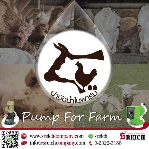 ปั๊มโดสคลอรีน สารละลาย เพื่อการฆ่าเชื้อในฟาร์ม